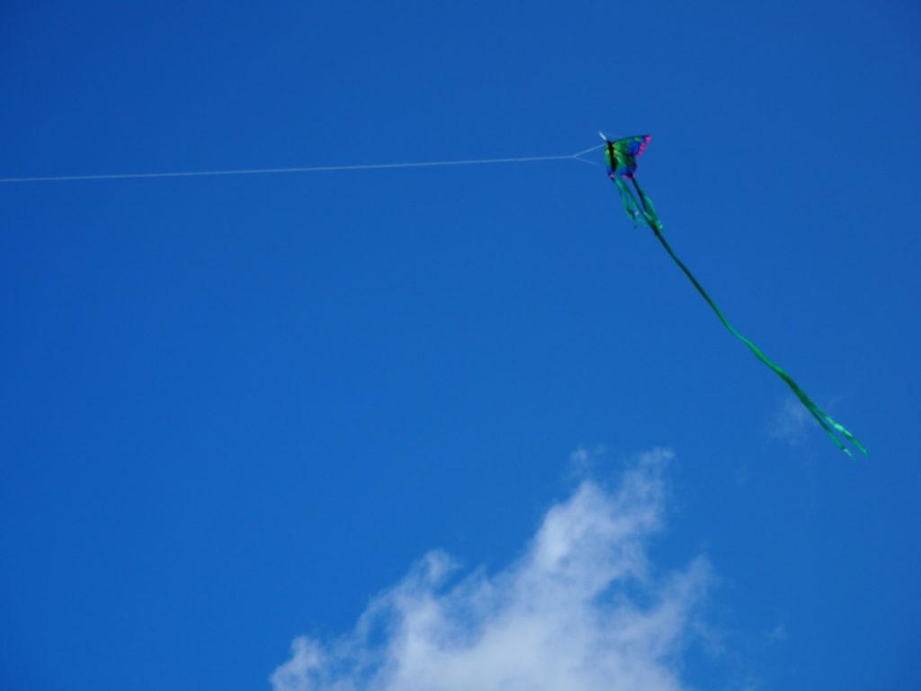 Dragen i lufta - Blått og tilstede