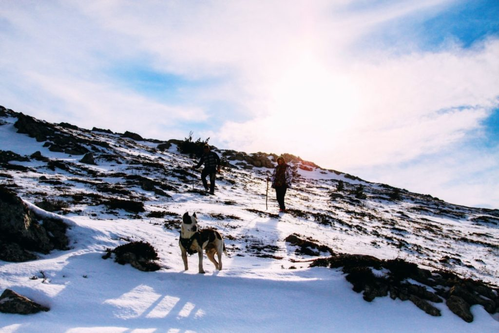 trip through the snowy mountains