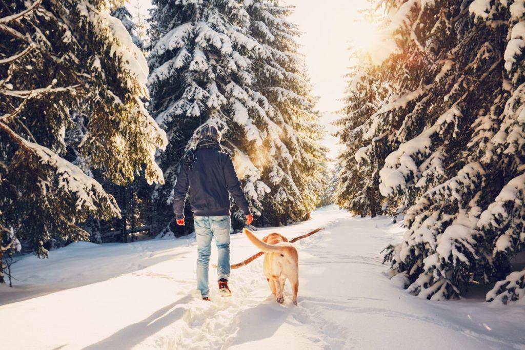 Trip to winter nature-pigg eller brodd