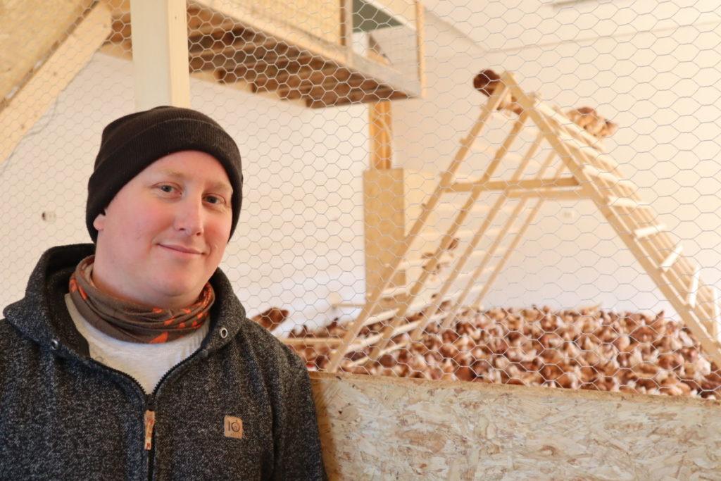 750 nye høner i Brunlanes