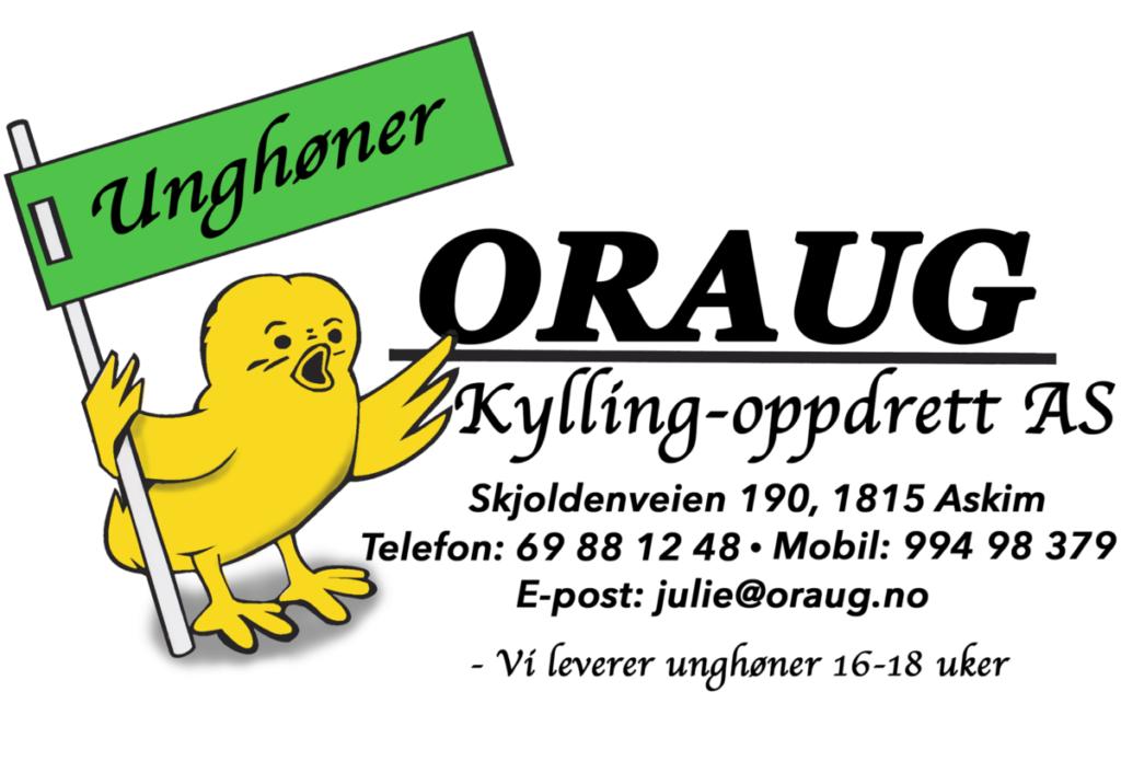Oraug Kylling