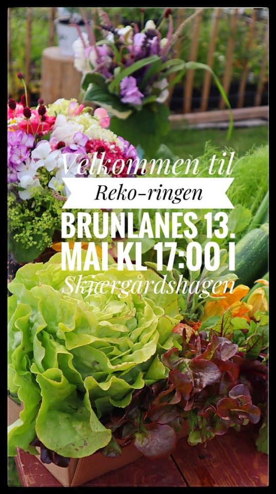 Plakat for reko-ringen Brunlanes 13.mai